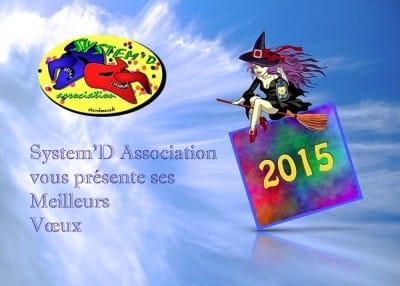 """Vœux System'D Association 2015 Année Sorcières """"Au Gré des Vents"""""""