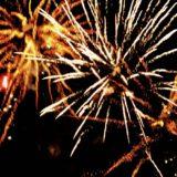 Pleins feux sur le 102e carnaval